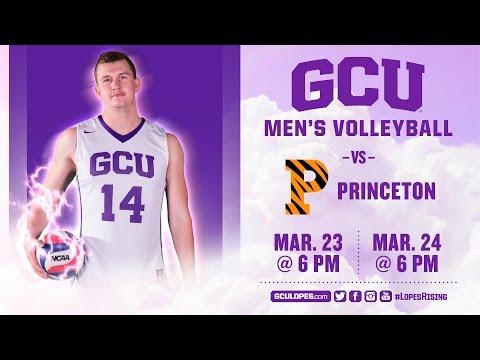 Men's Volleyball vs Princeton Mar 24th, 2017
