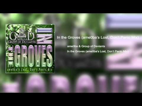 In the Groves (ame0ba's Lost, Don't Panic Mix)