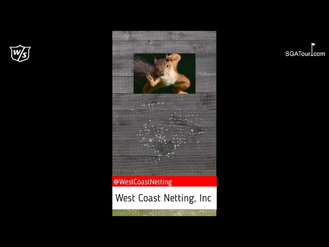 V3 Golf Net @ SGA National