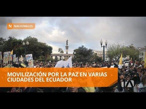 Miles de ecuatorianos se movilizan por la paz - Teleamazonas