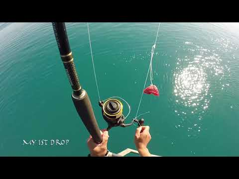 Fishing Airlie Beach Part 9 My 14 Day Road Trip To Cairns
