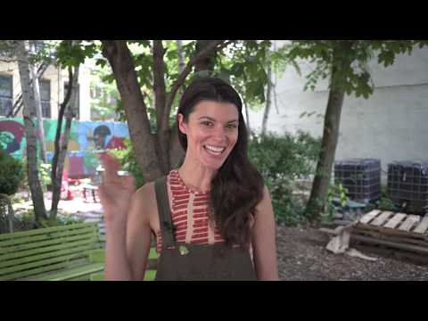 Cedar Bed Planter Giveaway: Gardeners.com x Homestead Brooklyn