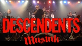 DESCENDENTS - MUSINK