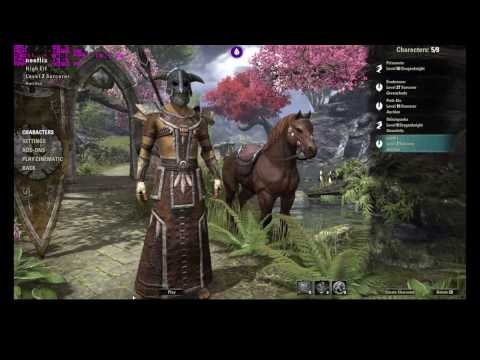 Liquidsky Gaming And Testing Elder scrolls online with pro plan