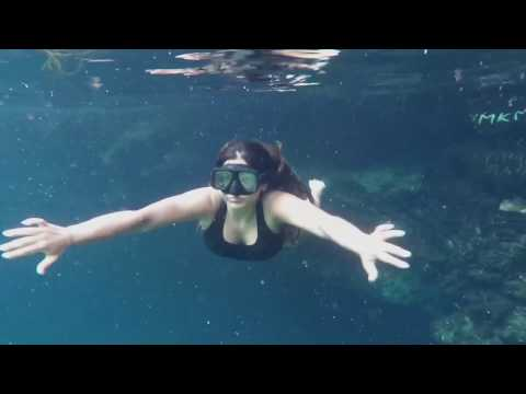 Travel- Top 3 Cenotes in Mexico Riviera Maya