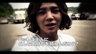 DVD情報 http://t.pia.jp/feature/hanryu/kimipe.jsp チャン・グンソク...