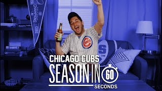Chicago Cubs Fans   Season in 60 Seconds