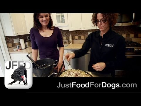 How To Make Homemade Dog Food | Just Food For Dogs
