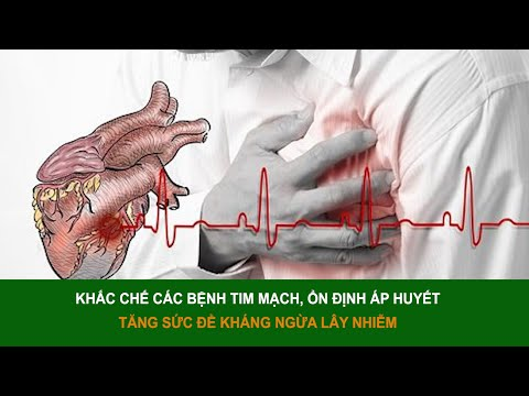 Khắc chế các bệnh tim mạch, ổn định huyết áp, tăng cường sức đề kháng | Sức khỏe vàng VTC16