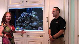 Fish Guy Tv Custom Built-in Aquariums