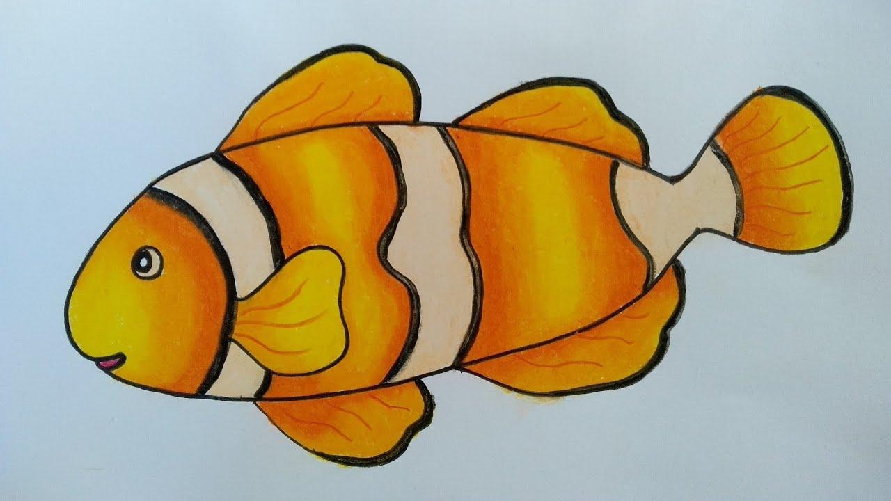 gambar ikan hias dan konsumsi yang mudah dibuat