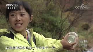 《远方的家》 20200507 大好河山 鸭绿江——大自然的馈赠| CCTV中文国际