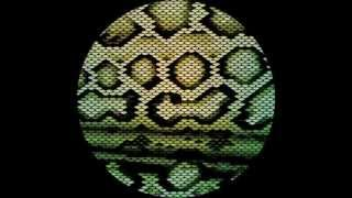 LV & Okmalumkoolkat: Zharp (Hyperdub 2010)