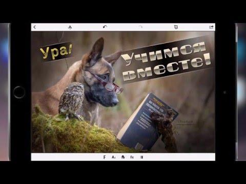 Виртуальная клавиатура Hot Virtual Keyboard для печати