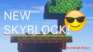 Winter Skyblock Minecraft PC #1!