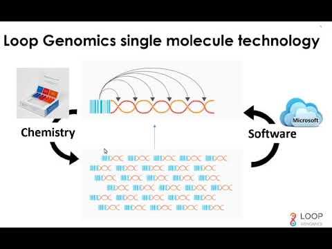 Loop Genomics 16s 18s LoopSeq Webinar