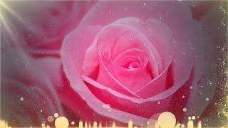 Розовый бриз для Вас! Pink breeze for you!