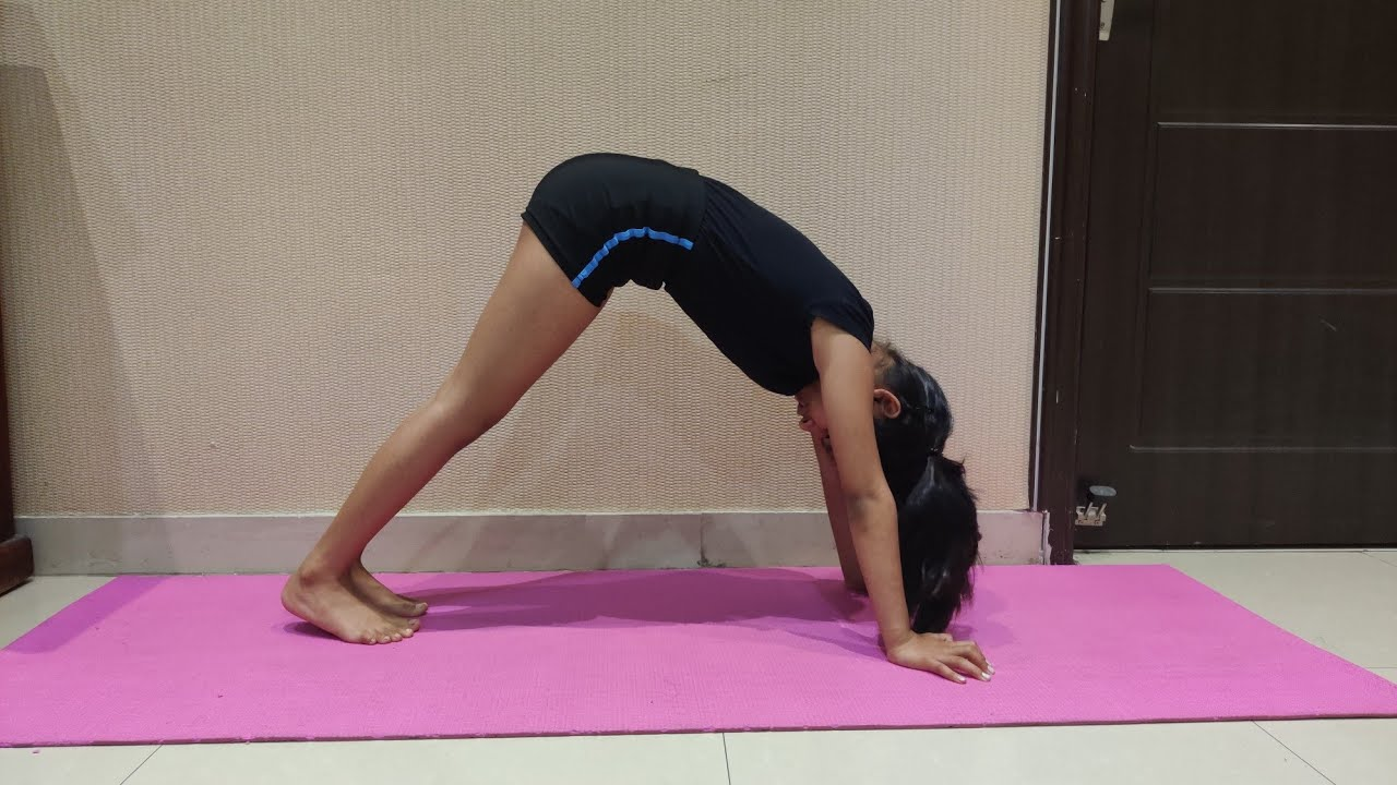 Downward and Upward Face Dog Yoga Pose, Puppy pose,Best Yoga Routine Asana for beginners, Stretching - YouTube