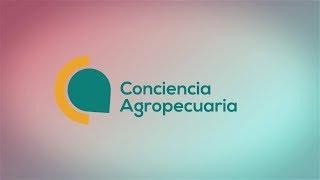 CAMINO RECORRIDO CONCIENCIA AGROPECUARIA