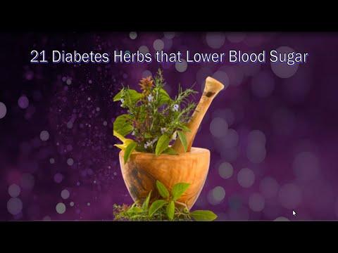 21 Diabetes Herbs to Control Blood Sugar | Diabetes Herbal Remedies