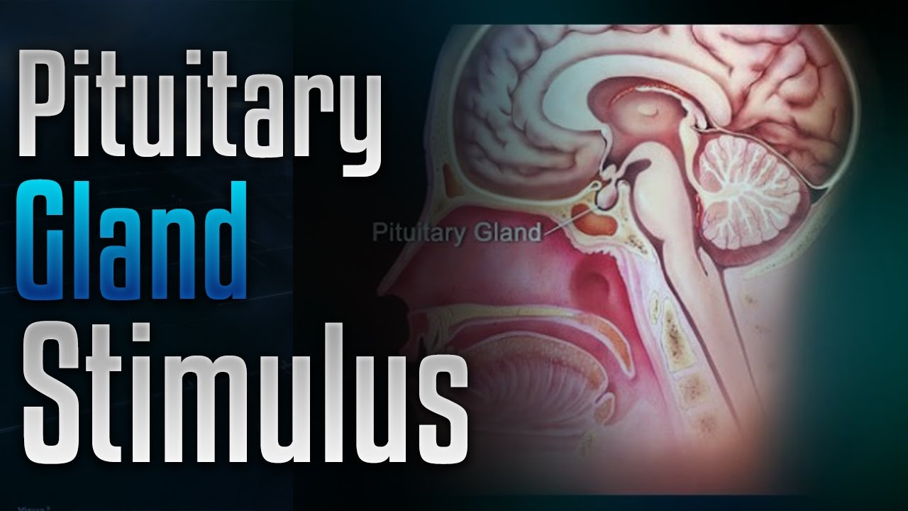 🎧 Pituitary Gland Stimulation to Release Growth Hormone with Simply ...