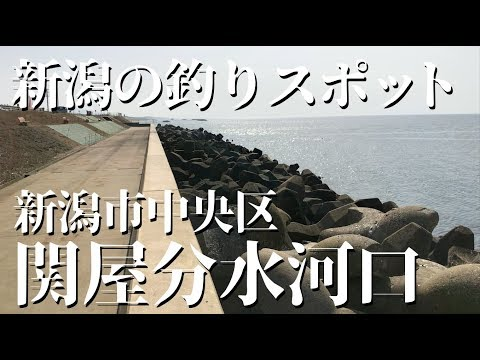 新潟 釣りスポット〈関屋分水河口〉