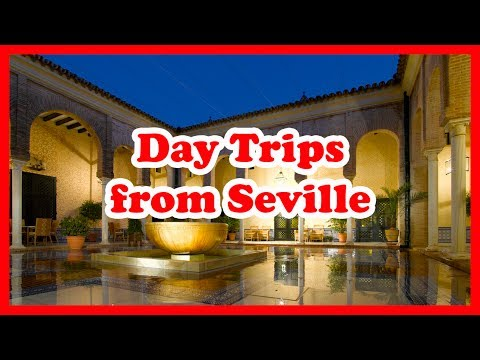 5 Top-Rated Day Trips from Seville, Spain | Europe Day Tours Guide