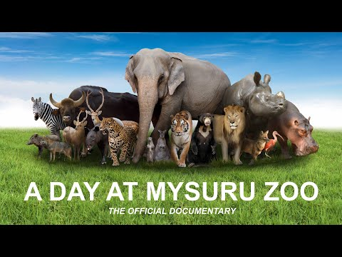 Mysore Zoo official documentary (HD) 'A Day at Mysuru Zoo'