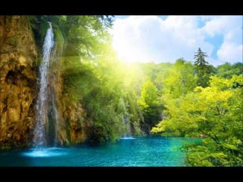 Лист Ференц - Шум леса