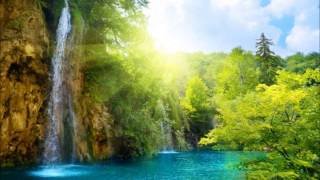 Шум леса Ференц Лист