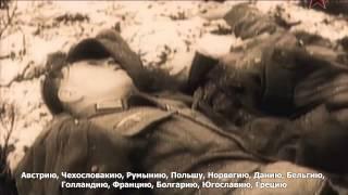 71 летию победы в Сталинградская Битве. Победа, ценою в миллионы жизни. Хронология великой победы