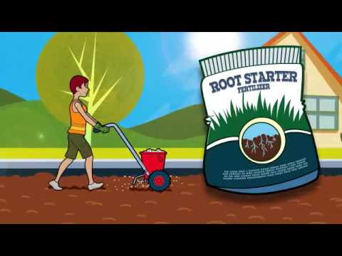 How To Install Sod: Key Steps For A Fresh New Lawn