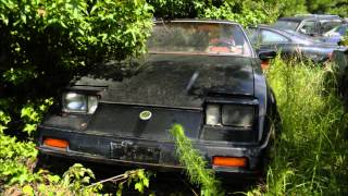 some rare and abandoned 1980s and 90s cars that need saving