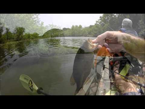 3b outdoors tv fox french broad river bass fishing for French broad river fishing