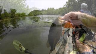 Kayak Fishing the French Broad River, Knoxville, TN