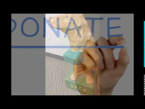 dictionary meaning of donate