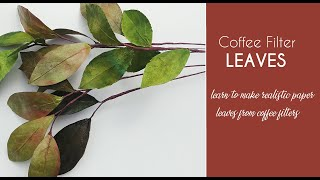 Coffee Filter - Paper Leaves