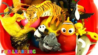 Learn Colors and Wild Zoo Animals For Kids with Fun Educational Toys