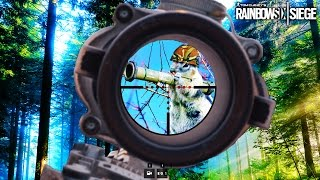 SQUIRREL!!! Great Times - Rainbow Six Funny Moments | HikePlays