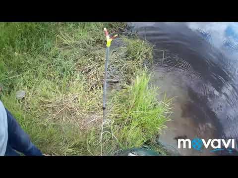 Рыбалка на реке Каргат. Пробный выезд.