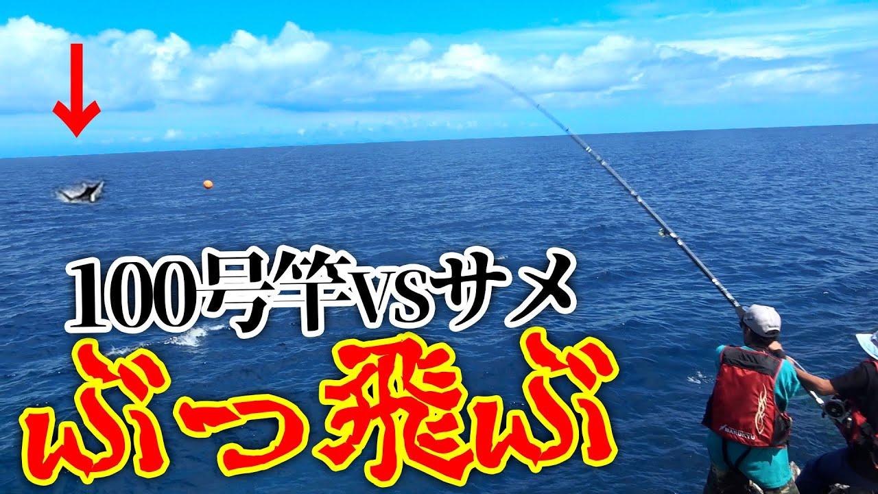 【回転ジャンプ】100号竿の生餌にサメが喰いついて激しく抵抗、緊張が走る