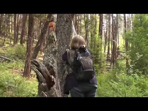 A Quick Visit  BFRO Researchers Maureen And Cori At Heffley Lake BC