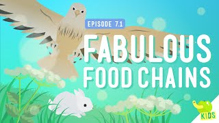 Fabulous Food Chains: Crash Course Kids #7.1