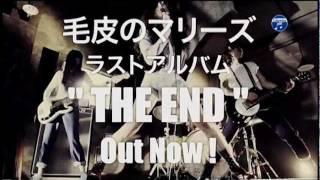 毛皮のマリーズ『THE END』TV-SPOT http://columbia.jp/kegawanomaries/...