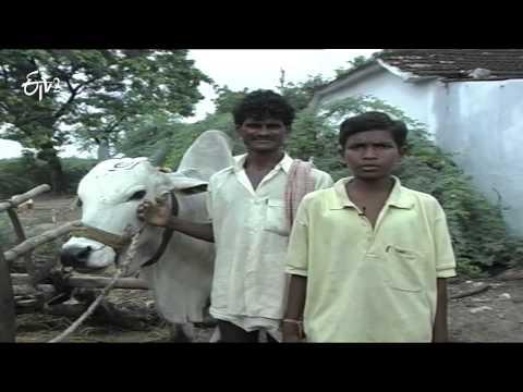 Telugu Velugu Archival - Episode - 91