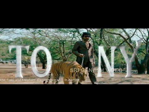 kannada new songs|  Tony Kannada Movie | Title Song - Aindrita Ray, Srinagar Kitty