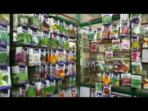 Amazing Nursery at Bangalore (Lalbagh Plant Nursery)