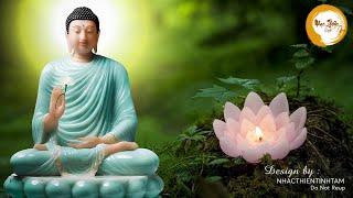 Nhạc Thiền Dễ Ngủ - Nghe 15 phút tâm hồn an tịnh dễ ngủ - Relaxing Music
