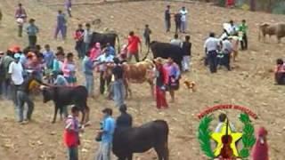 santiago en colcabamba