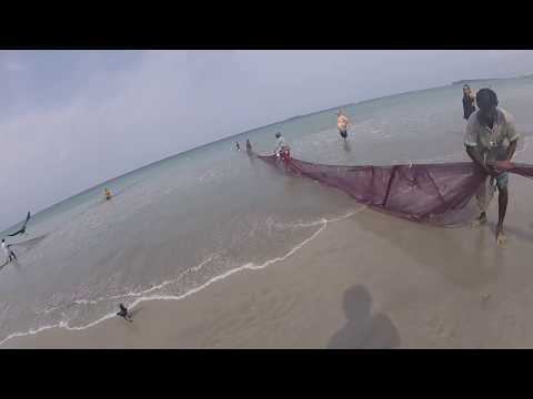 🔵 Dragnet Fishing In The Bay Of Bengal Trinchomalee Sri Lanka